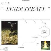 Sun Araw - Inner Treaty (cover)