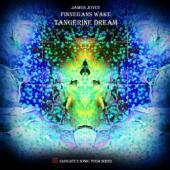Tangerine Dream - Finnegans Wake (cover)