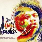 The Many Faces of Jimi Hendrix (3CD)