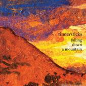 Tindersticks - Falling Down A Mountain (cover)