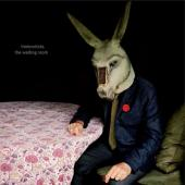 Tindersticks - Waiting Room (Limited) (CD+DVD)