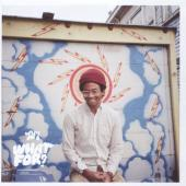 Toro Y Moi - What For (LP)