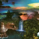 Tortoise - It's All Around (LP) (cover)