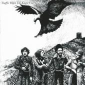 Traffic - When The Eagle Flies (cover)