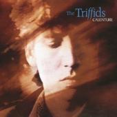 Triffids - Calenture (2CD)