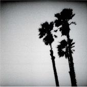 Twilight Singers - Blackberry Belle (cover)