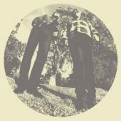 Segall, Ty And White Fence - Hair (LP) (cover)