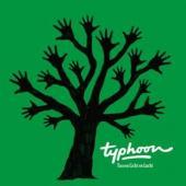 Typhoon - Tussen Licht En Lucht (2LP)