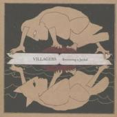 Villagers - Becoming A Jackal (cover)