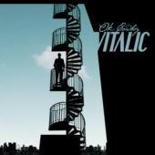 Vitalic - Ok Cowboy (cover)