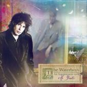 Waterboys - An Appointment With Mr. Yeats (cover)