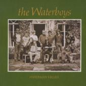 Waterboys - Fisherman's Blues (LP)