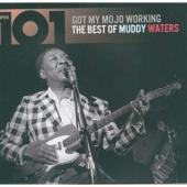 Waters, Muddy - 101 Got My Mojo Working (cover)
