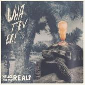 Whatever - Hello Are You Real / Aron Dalesio (LP)