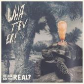 Whatever - Hello Are You Real / Aron Dalesio (LP)