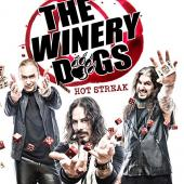 Winery Dogs - Hot Streak (cover)